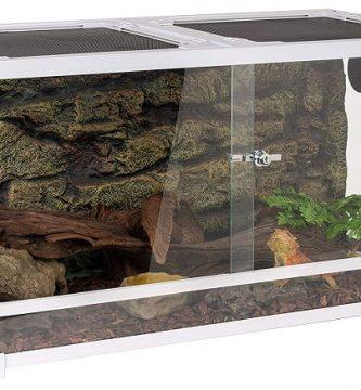 Oiibo Terrarium