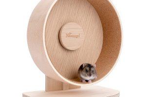 Pet Exercise Wheel