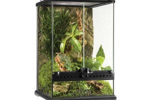 best terrarium for a chameleon