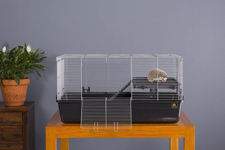 Best Cage For Hedgehog
