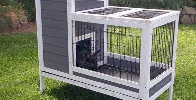Indoor Rabbit Cage - Indoor Rabbit Enclosure
